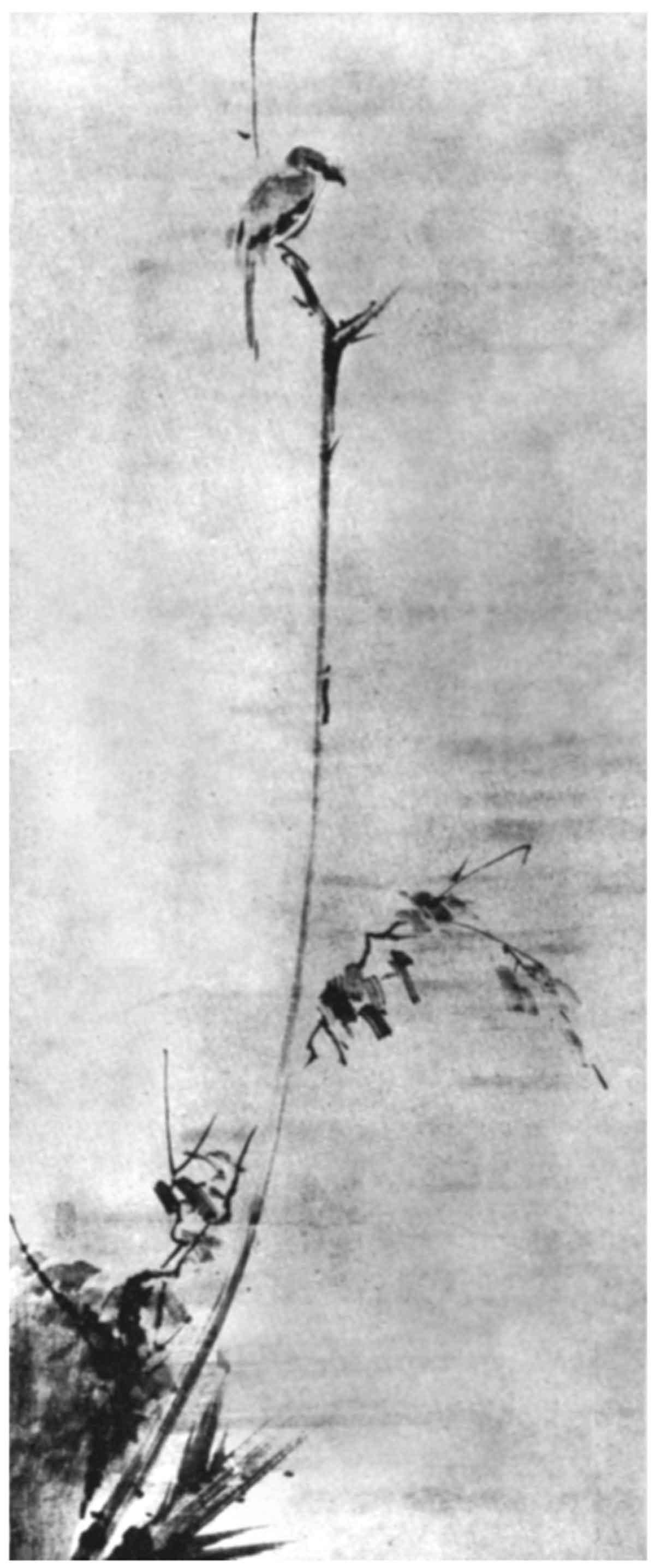 Miyamoto Musashi Tuschezeichnung