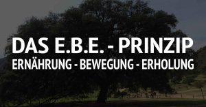 Das E.B.E. - Prinzip