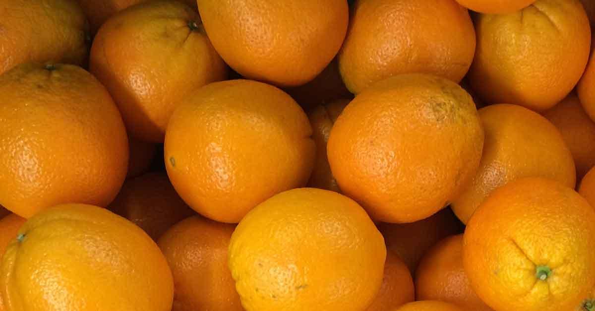 Apfelsinen sind nicht nur vitaminreich